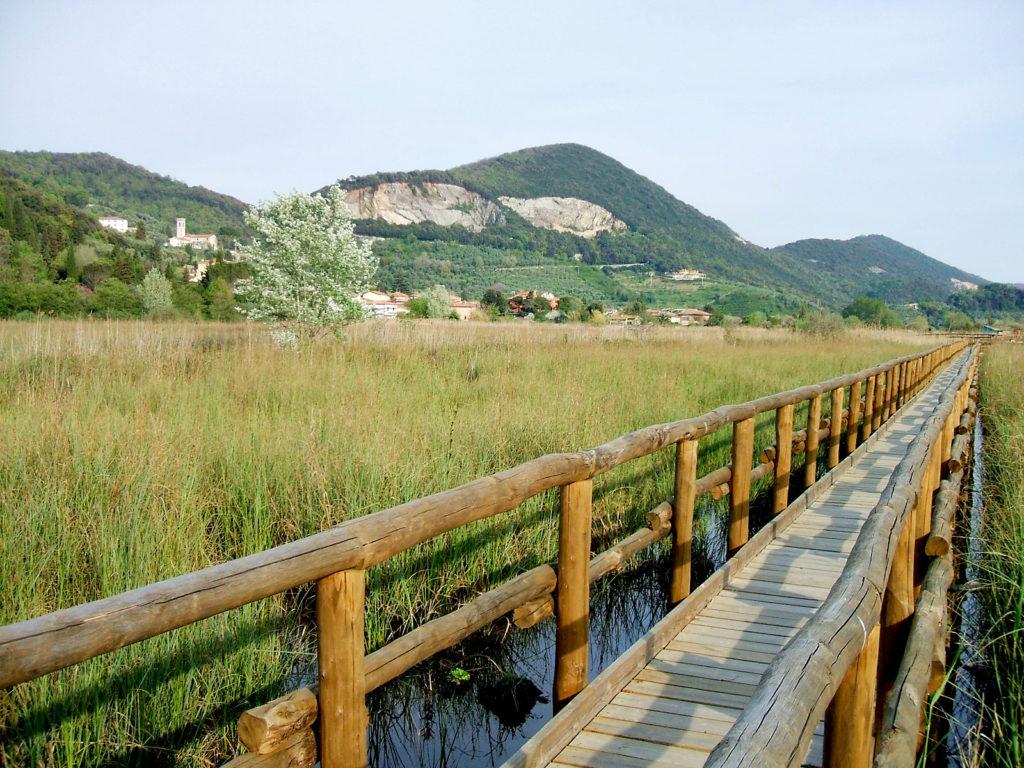 Parco di Migliarino San Rossore