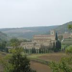 S. Antimo, Montalcino