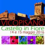 Vicopisano - castello in fiore