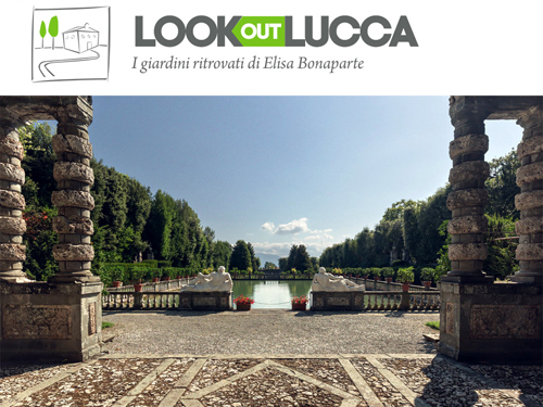 Look out Lucca - banner