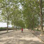Le Mura di Lucca in bici
